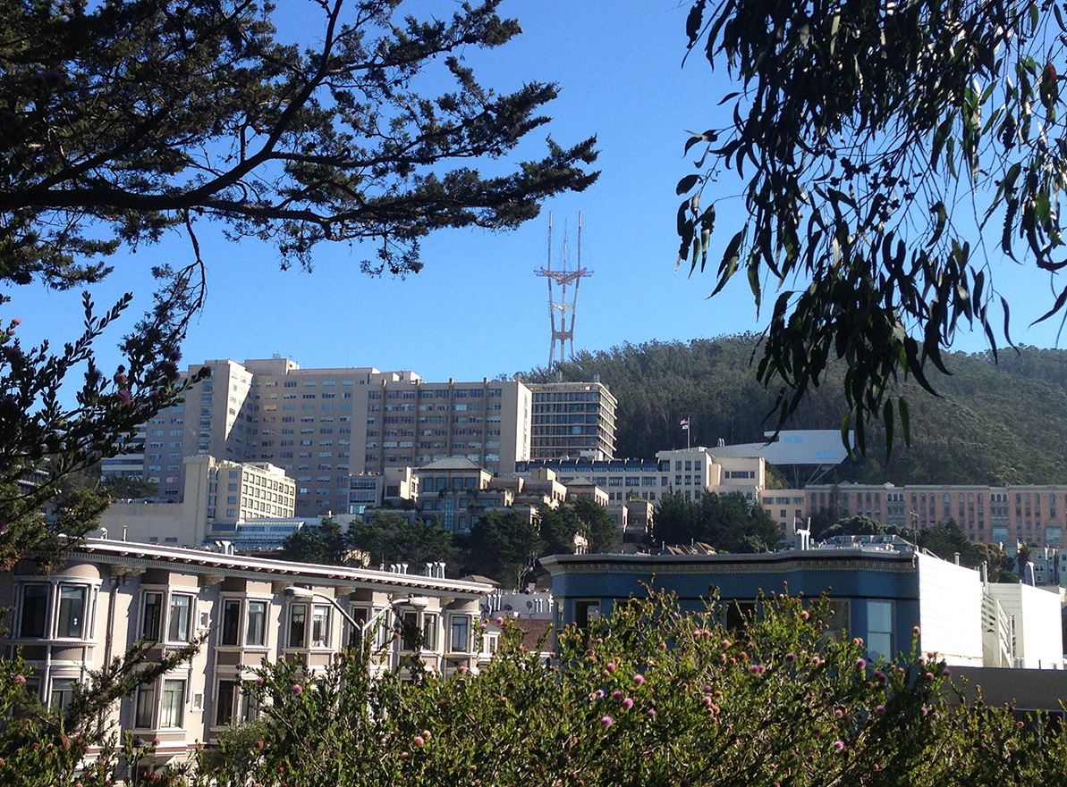 UCSF Parnassus seen from GG Park
